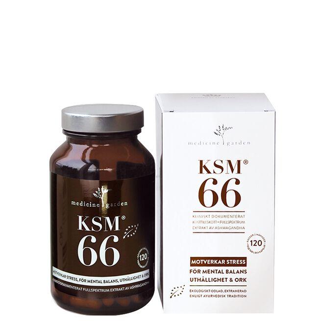 KSM-66, 120 kapsler